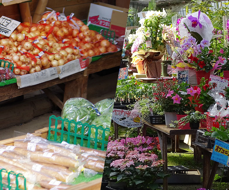 home_vegetables_company1